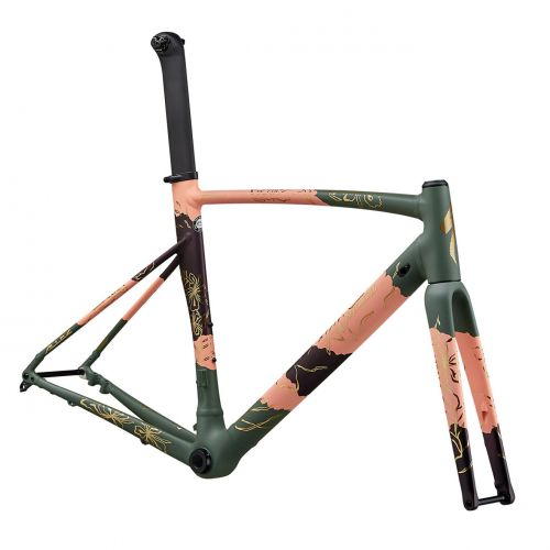 Specialized allez frame